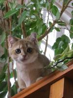 Юлия_2010