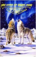 les loups du grand nord