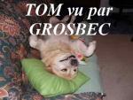 Grosbec