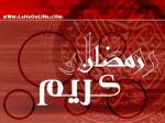 عسل فلسطين