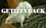 Getizzyback