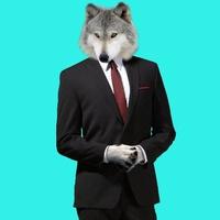 Wolf'Ensy