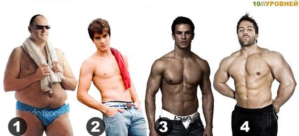 Для женщин: Какой по вашему мнению тип фигуры наиболее сексуален?  2711