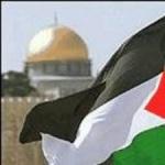 الطفل الفلسطيني 110