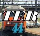 TER44