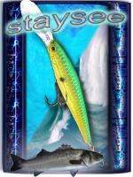 staysee