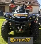 carpes37