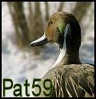 pat 59