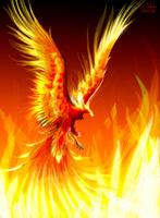 phoenix33
