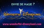 Wonderful Disneyland