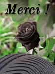 [GP] Rumeurs et news 2014. - Page 5 3243944402
