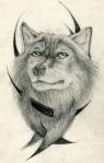 wolf911