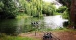 carp'fishing10