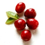 cranberry49