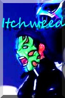 Itchweed