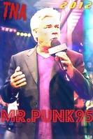 Mr.Punk95