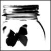 Broken.Butterfly.<'3