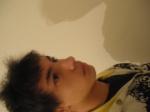 Nectro_sfl