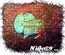 niko29