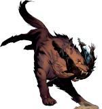 Skoellwolf