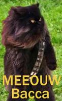 meeouw