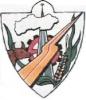 Escudos de los Municipios de la Provincia de Buenos Aires Roquep10