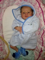 Forever-Babies Nursery