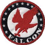 Clan Falcon