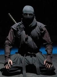 ninja3883