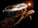 turtlesallaround
