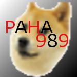 paha989