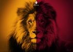 aslan02