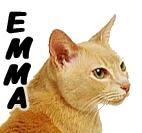 Emma8432