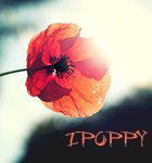 ipoppy