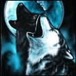 Wolf the Wolf