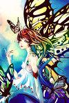 Butterfly_Queen