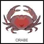 crabe59