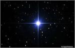 L'étoile du chien