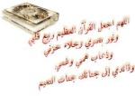 نور الاسلام14