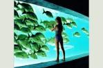 aquaric85