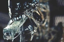 alien gril23
