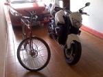 Alvinho 1250