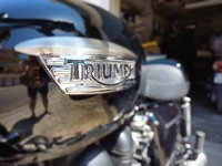 New Triumph Bonneville 3619-32