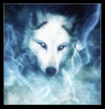 nyroc wolfen