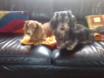 emeraudelagon