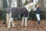 Horseliberta