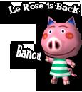 banou