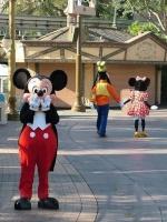 Mickey's Fun Well