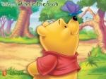 Winniethepooh7