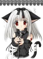 BlackCat06